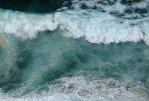 sea / by Amy Srey