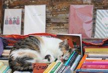 Literary pets.