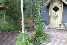 Viherpiiperrystä / Puutarha ideoita ja omia tekeleitä