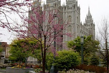 LDS Temples / This board contains images of the Temples constructed by The Church of Jesus Christ of Latter-Day Saints.  There are currently 136 operating worldwide, with 15 announced and 15 in construction, bringing the total to 166. / by Michelle Bray