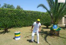 Una passione chiamata Capoeira