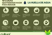 infografia / by camila camila