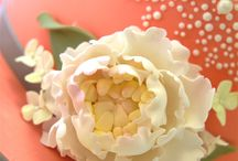 Sugar Flowers / by Pink Cake Box