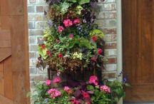 Gardening: Container Gardens