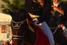 Simon Missiaen / One of the best Belgian dressage riders