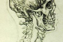 Anatomía  / by Karla Valay