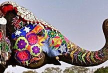 Colors and Elephants...
