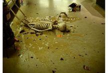 Skeleton War!!!!