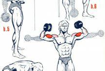 Bicipiti allenamento
