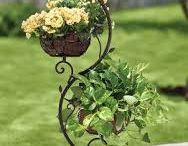 Plantas & Jardines