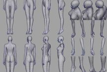 Anatomy Female