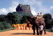 Sri Lanka / by Ayesha Hettiarachchi