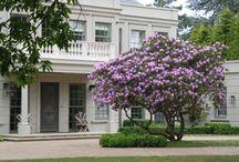 Surrey Garden B
