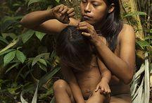 Amazonas Indian Brasil