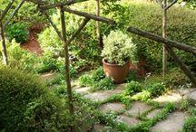 Outdoors & Gardening / by Jonathan McCollum
