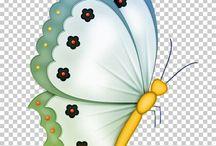 vlinder kaartjies