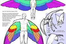 anatomy of things