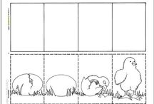 secuencia del pollo