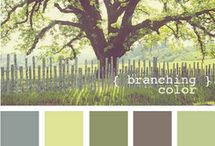 Color & Inspiration / by Brynn Marie Dukes
