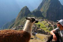 Zuid-Amerika / Leer de Tango dansen in Argentinië, wandel door het Andesgebergte of ontspan op de vele stranden van Brazilië. Op Vakantieboulevard.nl vind je jouw reis naar Zuid-Amerika.