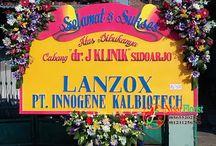 Pembukaan J Klinik Sidoarjo, Ucapan Bunga Papan Sukses oleh Lanzox