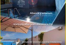 Alberca-Solarium.