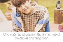 wannable( quotes wanna one )
