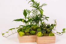 My soul breathes modular gardens / Fresh ideas to design your unique green space, at home or at the office.