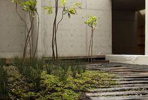 courtyard / by Steve Gustafsson