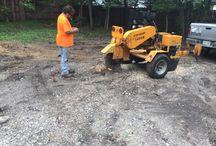 Stump Grinding Omaha Nebraska / Stump Removal Services in Omaha, Nebraska