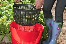 our vege garden thatll prob never happen