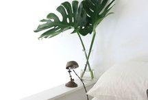 Green Ideas // / Ci piace circondarci dalla natura. Il verde è il nostro colore preferito.