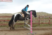 Jumping Lessons / Jumping lessons showing a range of abilities