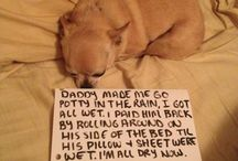 Way too cute!