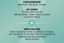 Explorer archetype