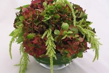 Hotel Floral Designs / Assorted floral designs for hotel lobby and in-house decor.