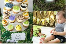 Alisters first birthday / Party theme ideas