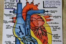 diagrams, charts, maps etc
