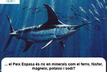 Peix espasa / Pez espada / Aquí trobaràs curiositats sobre el peix espasa / Aquí encontrarás curiosidades sobre el pez espada