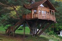 2017 Homestead: tree houses / by Rebecca Benson