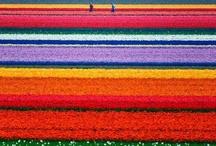 Favorite Places & Spaces / by Leslie Howard