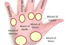 Reading palms