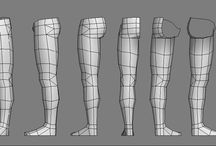 Legs,Anatomy