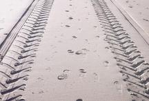 Tracks at the Beach
