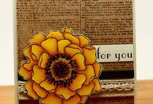 Flower cards / cards