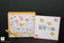 Verpackung, Stampin' Up! / Verpackungen / Geschenke mit Produkten von Stampin' Up! hergestellt, gestempelt.