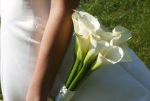 Jordy's Wedding ideas!!! / by Allie Hall