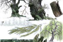 Foret, arbre vegetation