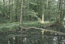 Werka fotografuje / http://facebook.com/WerkaFotografuje