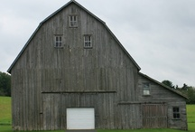 Old barns  / by Monica Pollard